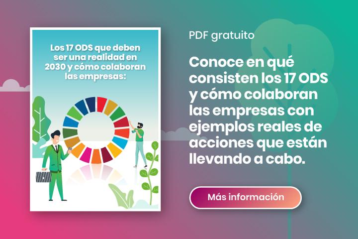 infografía explicativa ODS