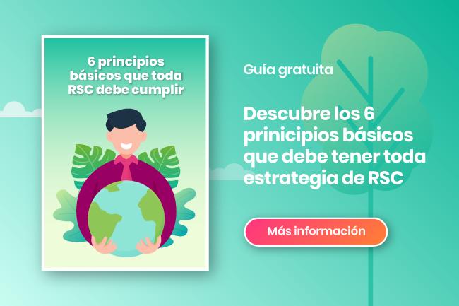 infografía principios rsc