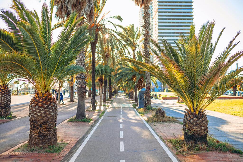 Smart city y movilidad sostenible